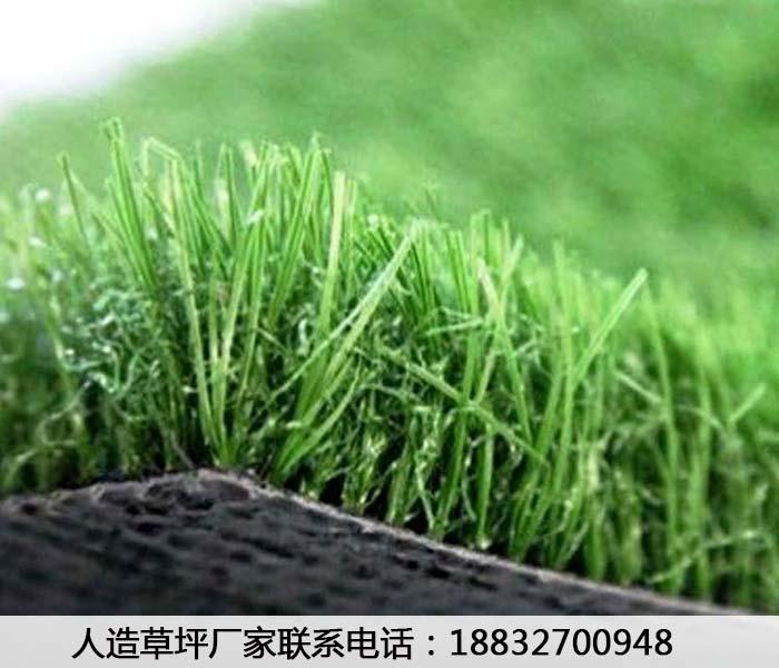 仿真草坪人造草坪邯郸按需设计