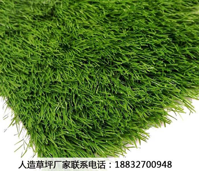 人造草坪单丝四川成都价格公道