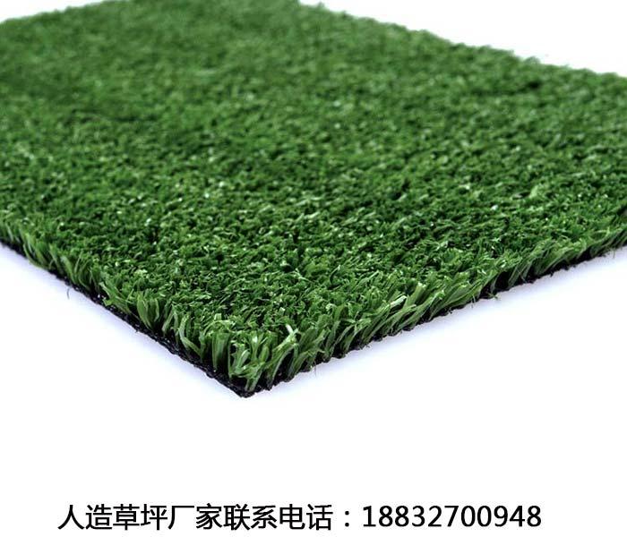 松山草坪批发价格多少钱平泉