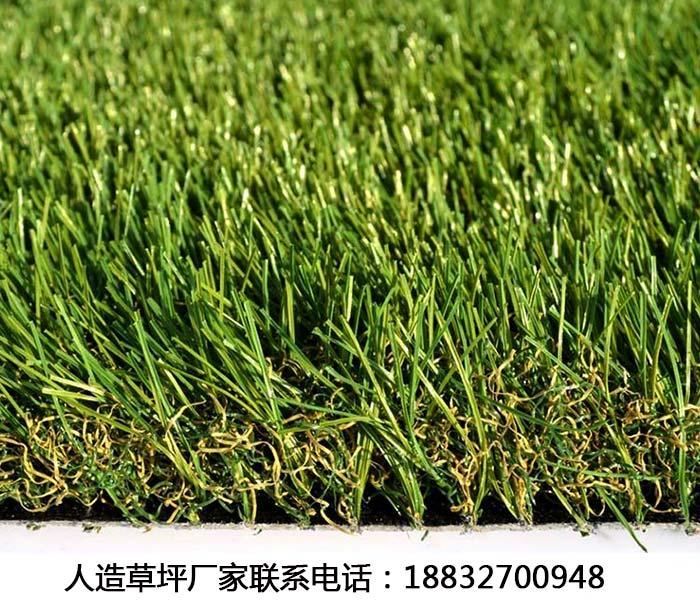 人造草坪湛江每平米价格
