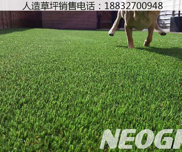 人工草坪草皮汕尾施工教程