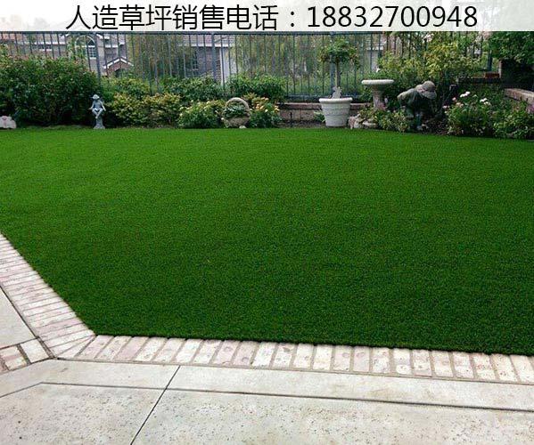 庆云塑料草坪的价钱涞源