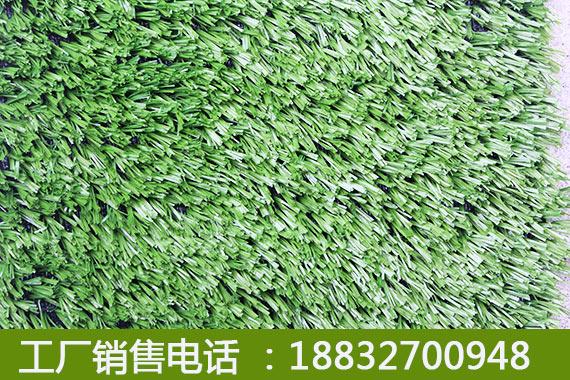 灵寿室外人造草皮厂家排名阳原