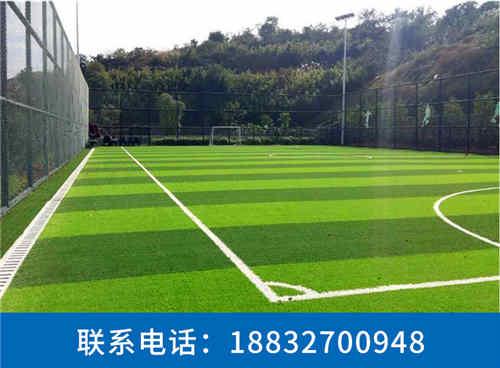 南岔休闲系列人造草坪生产厂家唐海