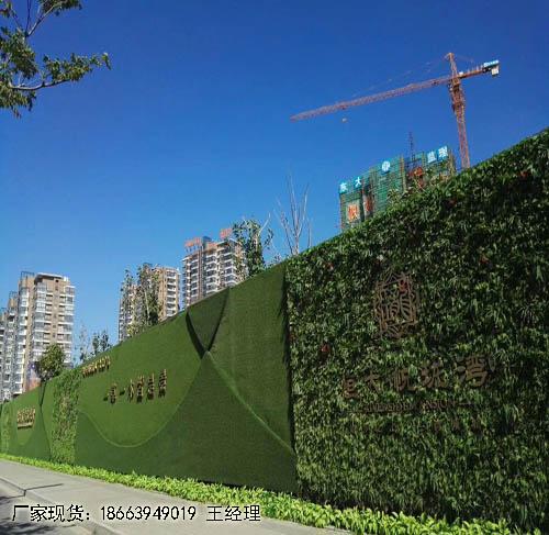假草皮固定在墙上东港及价格