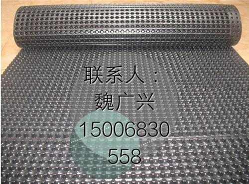 保质保量'云南车库顶板两公分排水材料价格
