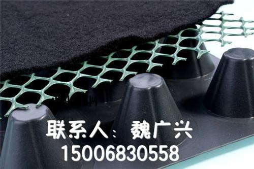 发货效率高陕西卷材塑料排水板方块蓄排水板厂家