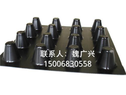 合作共赢;浙江绿黑色双面凹凸蓄水排水材料生产厂