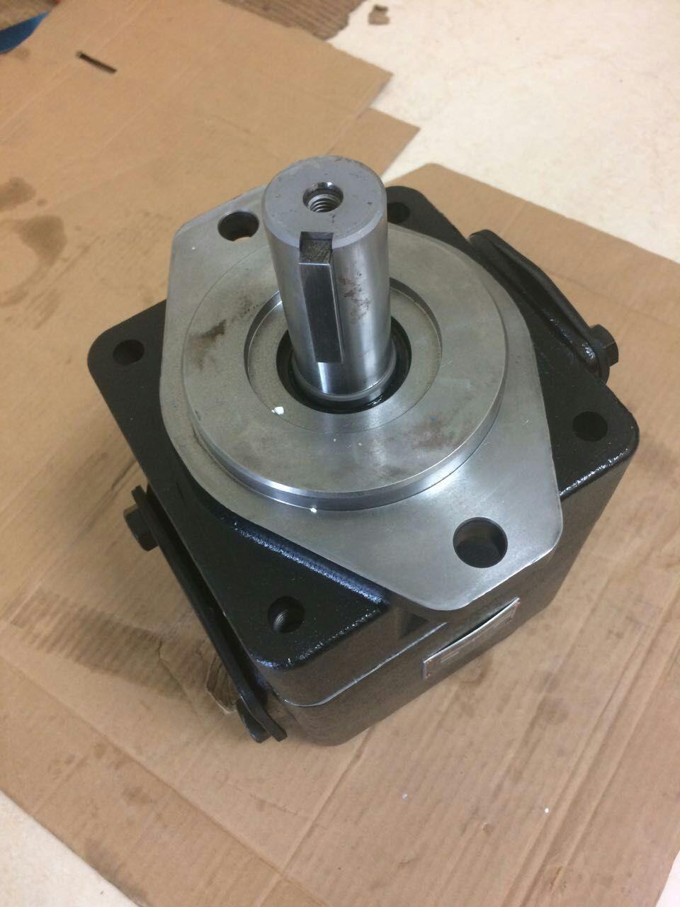 机械油泵:T6E-066-TL02-C1代理商