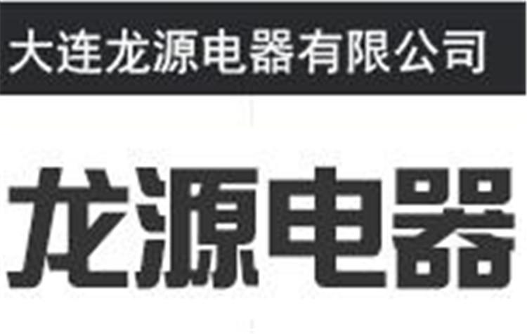 大連龍源電器有限公司Logo