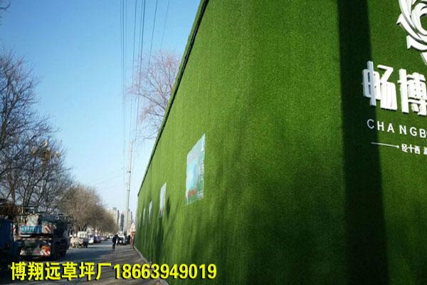 廣陵區圍擋人造草坪品牌廠家【彎曲型】