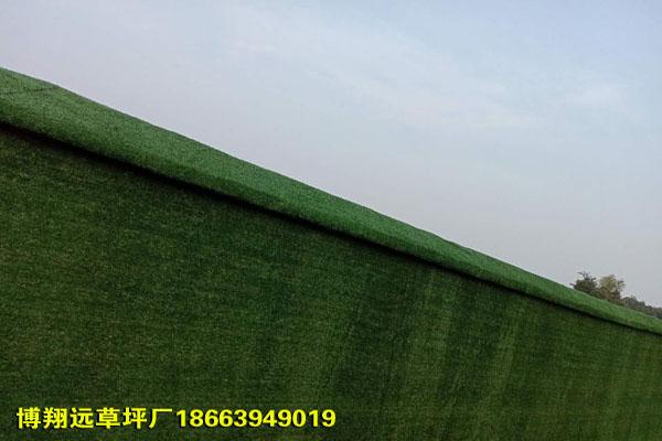 秦皇島圍擋人工草皮新國標廠