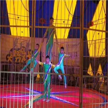 卢氏县大马戏团表演时间火爆方案执行