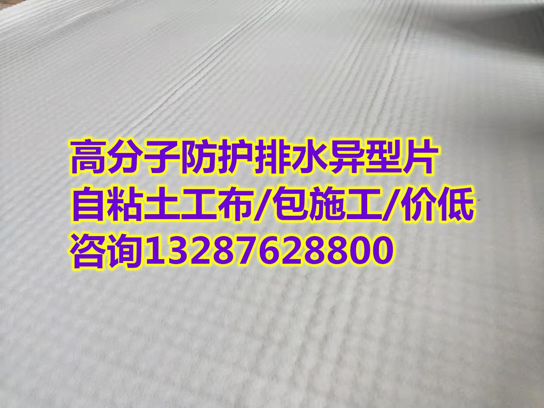 【肇庆复合防护排水异形片】(专业施工队伍)