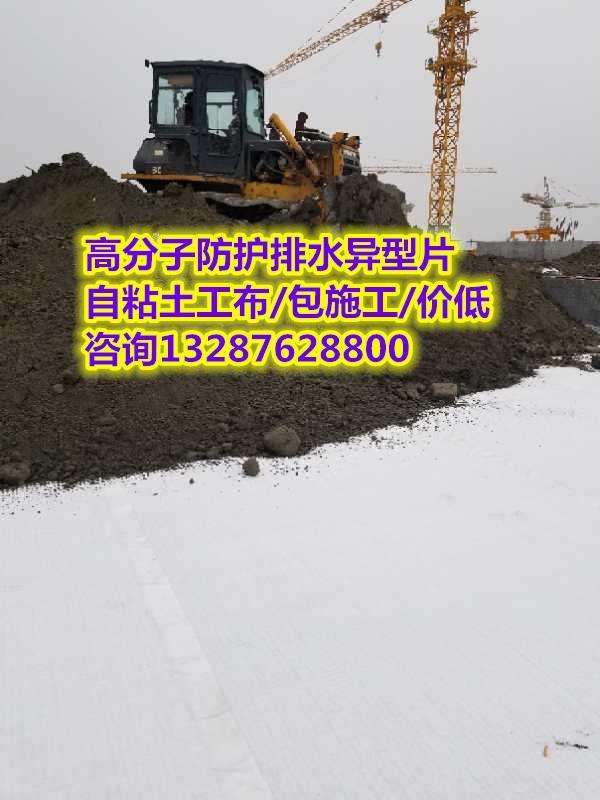 【安顺高分子防护排水异型片】(专业施工队伍)