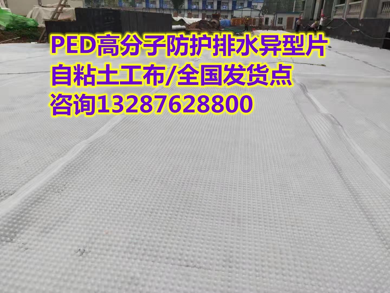 【盘锦14厚高分子防护排水异型片】(专业施工队伍)