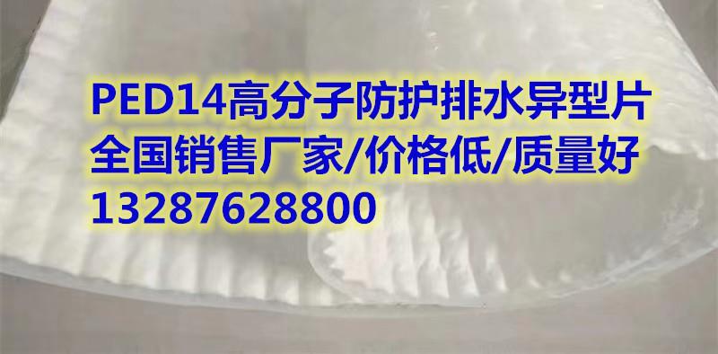 【赣州PED高分子防护排水异型片】(专业施工队伍)
