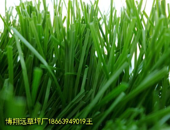 大庆销售供应涤纶人造草坪