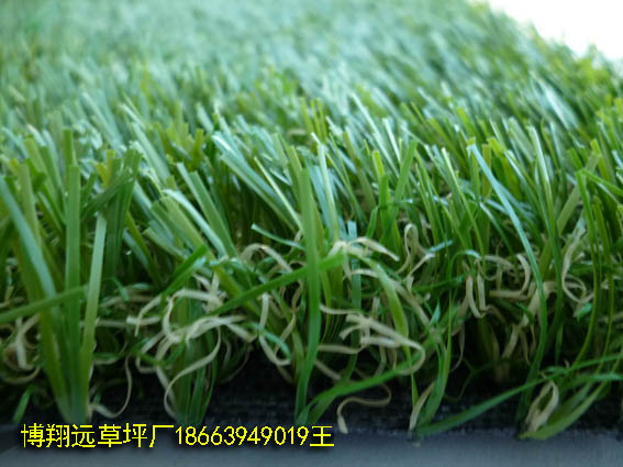 安庆销售供应塑料人工草坪厂家