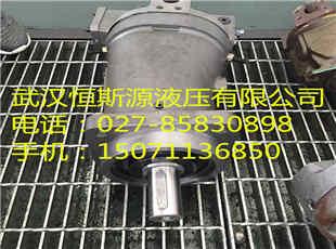 海西州多头泵ZM1002-S2+100