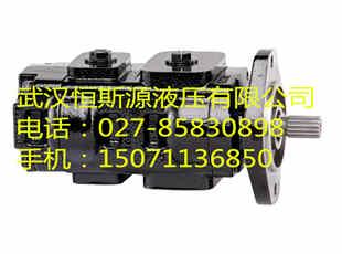 金华市变量叶片油泵S-PV2R13-6-116-F-R