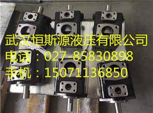 宿州市变量叶片油泵S-PV2R12-6-53-F-R