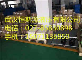 洛阳市高性能叶片油泵S-PV2R13-8-76-F-R