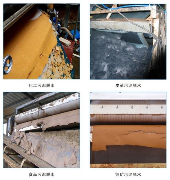 黃浦區脫水機鑄鐵壓濾機批發