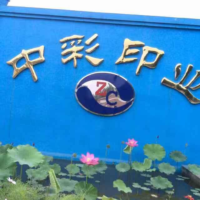 固安縣中彩印業有限公司Logo
