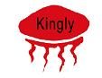 北京康迪光電子股份有限公司上海分公司Logo