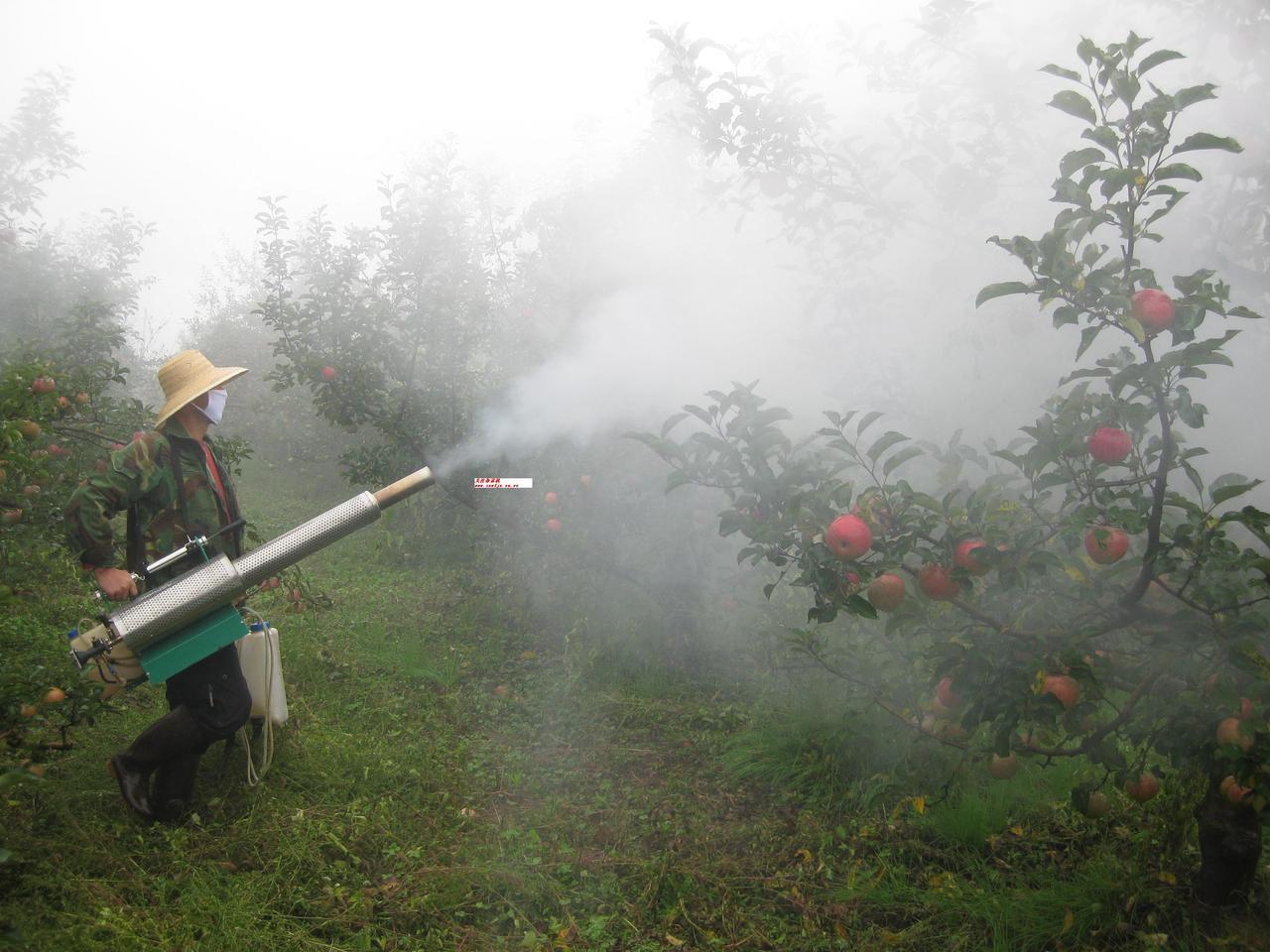 柑橘树喷药机 喷雾器_弥雾机价格_弥雾机厂家