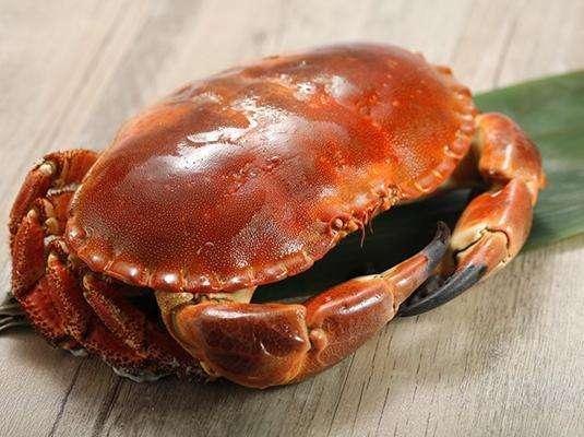 武汉墨西哥红龙进口清关时效冰鲜进口清关龙虾进口关税
