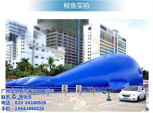 大鲸鱼岛海洋球,珠海大鲸鱼岛,华乐气模(大鲸鱼岛厂家直销大鲸鱼岛海洋球厂