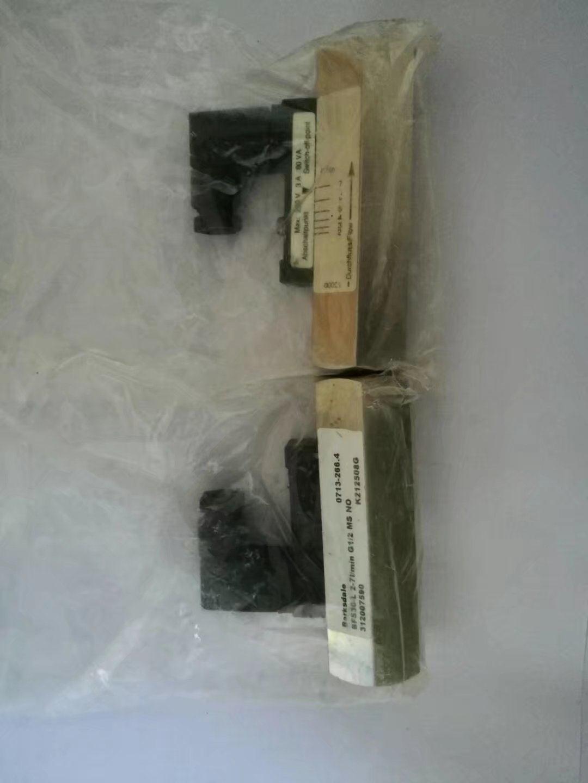 乐山BPS31GVM0100B价格