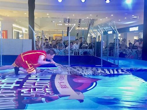 丹棱县出租马戏团表演怎么合作的