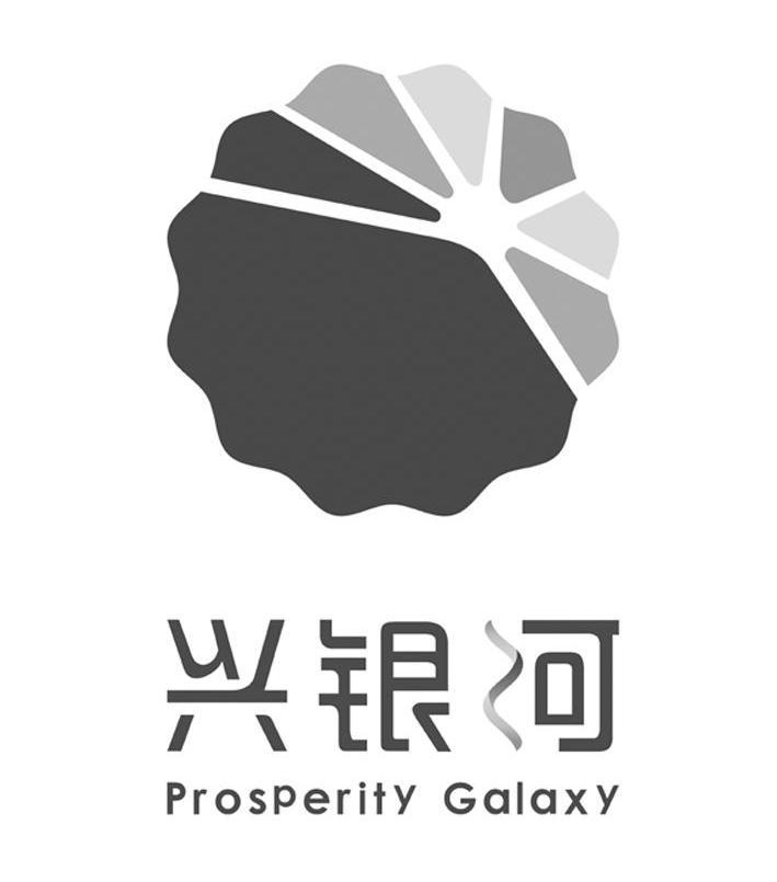 湖北興銀河化工有限公司