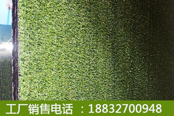 蓬安人造草坪價格_綠美亞公司