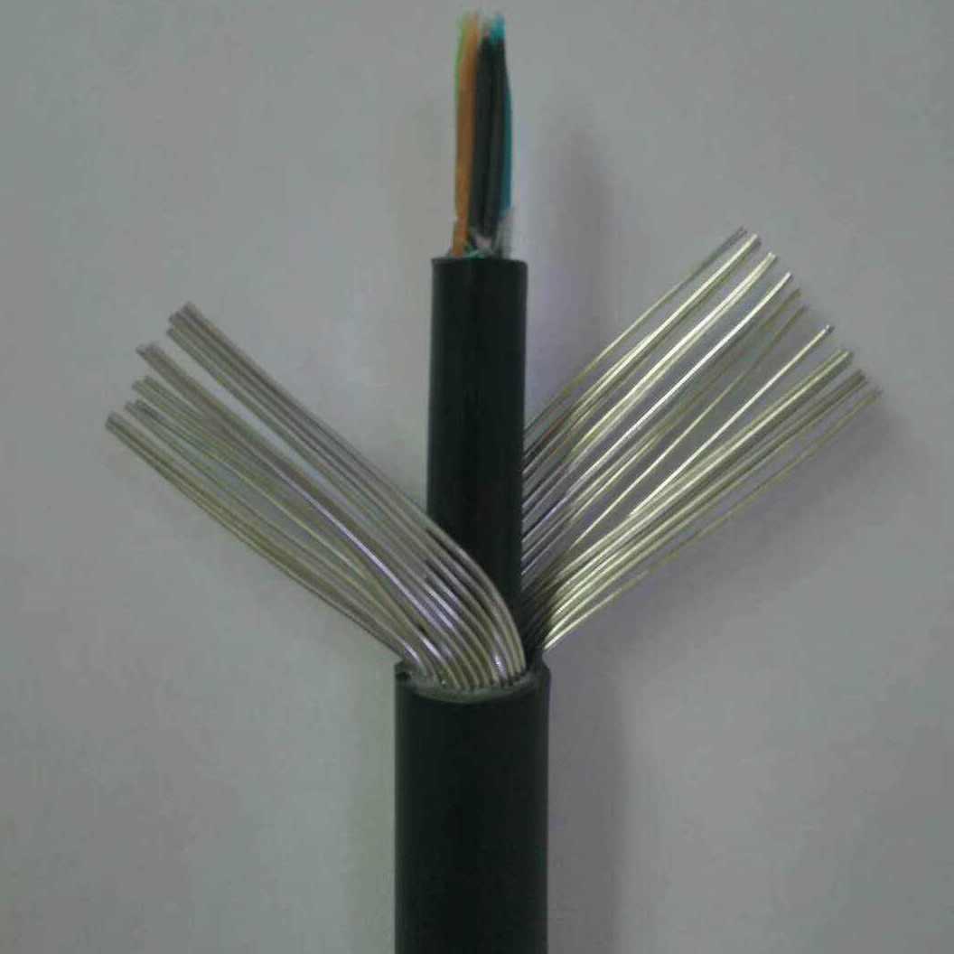 临洮ZR-RVV-450/750V电缆规格