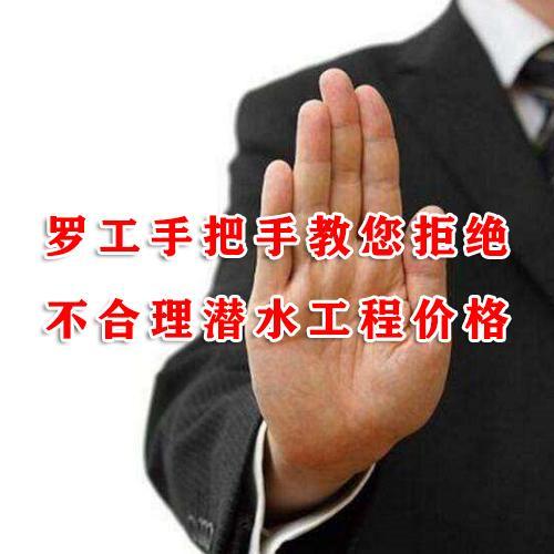 江苏鸿金龙水下工程有限公司
