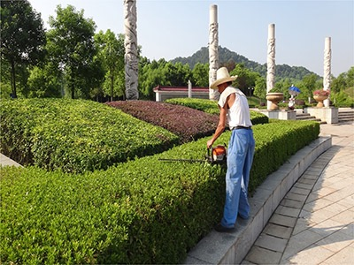 郴州春城园林绿化服务有限公司